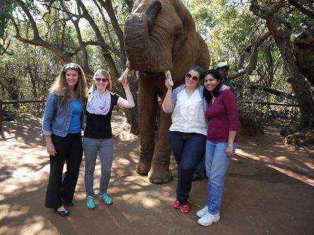 7.5.14 Elelphant Sanctuary (15)