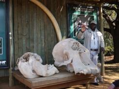 7.5.14 Elelphant Sanctuary (33)