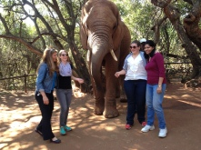 7.5.14 Elephant Sanctuary (11)