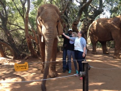 7.5.14 Elephant Sanctuary (4)