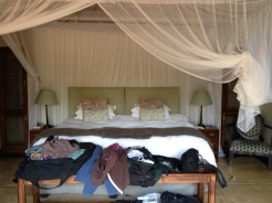 Thornybush room (8)